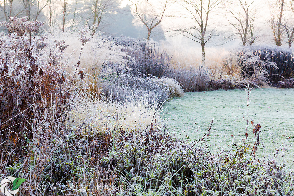 These images are soon to be published in the UK, but will be available for sale for editorial use from mid-2021, please contact me for information.<br /> <br /> Trentham Gardens, near Stoke-on-Trent, Staffordshire, photographed on a frosty late autumn morning.