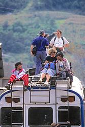 Tourists & Locals  Todos Santos Festival