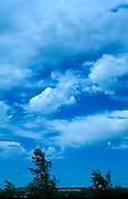 Vertical image with blue sky, clouds and trees in the horizon low in the frame