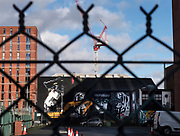 """""""Two Tigers"""" by Marian Noone, aka Friz, can only be seen through a fence during the street art walking tour in Belfast November 11, 2018. A parking garage will soon be built in front of it."""