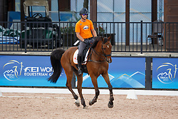 Van De Vendel Theo, (NED), Zindane<br /> World Equestrian Games - Tryon 2018<br /> © Hippo Foto - Sharon Vandeput<br /> 11/09/2018