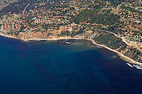 Aerial view looking east on Palos Verdes with a productive kelp forest in the foreground along the coast.