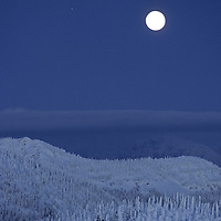 Flathead National Forest, Montana. Moonrise over snowy trees called snow ghosts in the Whitefish Range.