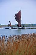 AREJWE Sailing barge Cygnet River Alde Snape Suffolk England