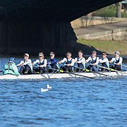 All Photos - Division 1 - Head of the Trent 2018