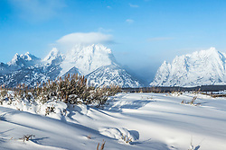 """Snowy sage, winter in the Grand Tetons<br /> <br /> For production prints or stock photos click the Purchase Print/License Photo Button in upper Right; for Fine Art """"Custom Prints"""" contact Daryl - 208-709-3250 or dh@greater-yellowstone.com"""