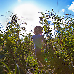 A young girl in a field at the Pell Farm in Grafton, Massachusetts.