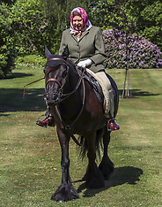 The Queen rides out during the Coronavirus Pandemic - 31 May 2020