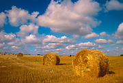 Bales and cumulus clouds. Shellbrooke. Saskatchewan. Canada