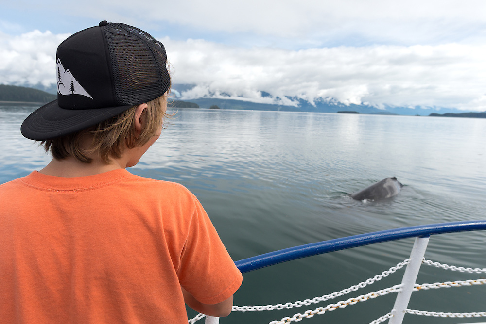 Boy watching a Humpback whale from a boat in Southeast Alaska.