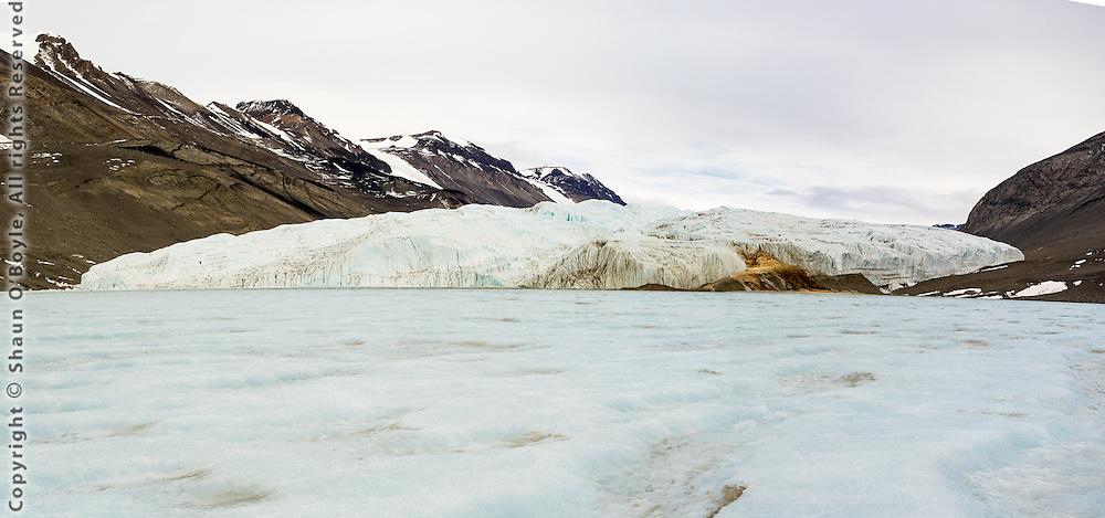 Taylor Glacier