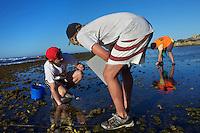27/Enero/2013 Australia. Perth. Isla Rottnest.<br /> Científicos de la Universidad de Western Australia, UWA, cogen muestras de la zona intermareal en la isla de Rottnest para su estudio.<br /> <br /> © JOAN COSTA