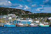 Little fishing boats in Marguerite bay in St. Anthony, Newfoundland, Canada