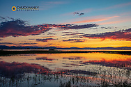 Vivid sunset reflects into wetlands pond at Ninepipe WMA in the Mission Valley, Montana, USA