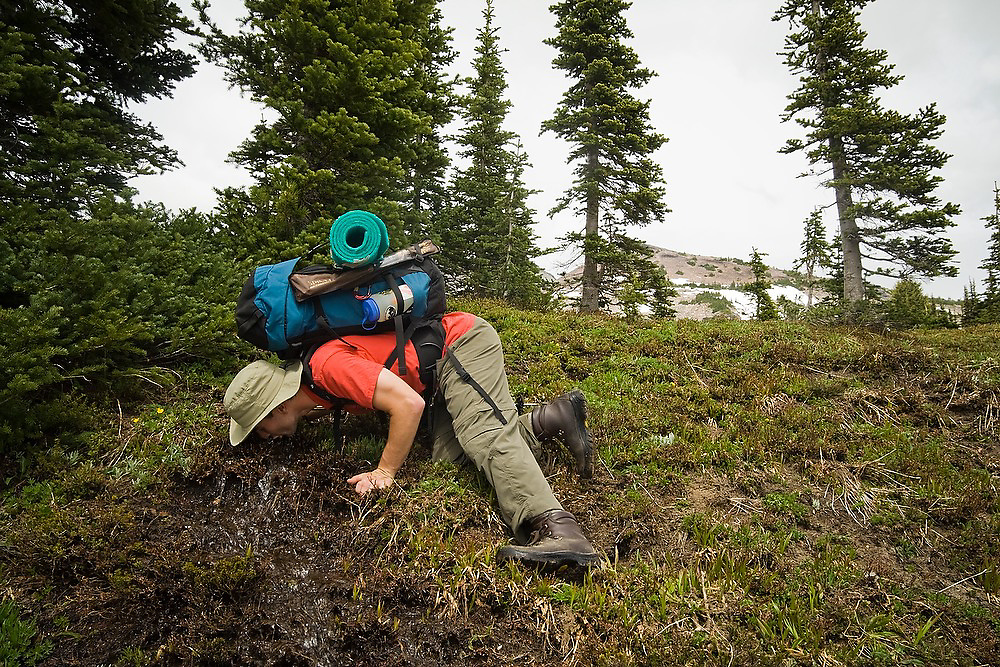 Dallas Anderson leans down to the ground to drink mountain spring water along the trail to Goat Lake on a backpacking trip in Goat Rocks Wilderness, Washington.