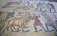 Ox man being diciplined from the Ambulatory of The Great Hunt, room no 28,  at the Villa Romana del Casale,  first quarter of the 4th century AD. Sicily, Italy. A UNESCO World Heritage Site. .<br /> <br /> If you prefer to buy from our ALAMY PHOTO LIBRARY  Collection visit : https://www.alamy.com/portfolio/paul-williams-funkystock/villaromanadelcasale.html<br /> Visit our ROMAN MOSAICS  PHOTO COLLECTIONS for more photos to buy as buy as wall art prints https://funkystock.photoshelter.com/gallery/Roman-Mosaics-Roman-Mosaic-Pictures-Photos-and-Images-Fotos/G00008dLtP71H_yc/C0000q_tZnliJD08