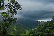 Pura Vida Ecolodge is a new eco-luxury retreat in the south Pacific zone of Costa Rica. The retreat itself is surrounded by lush primary and secondary rain forest, waterfalls, nature trails and a plethora of flora,  fauna and magical wildlife.