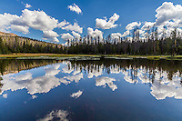 Summer clouds reflect in the cool waters of Lake Marion in the Uinta Mountains, part of the Ashley National Forest.