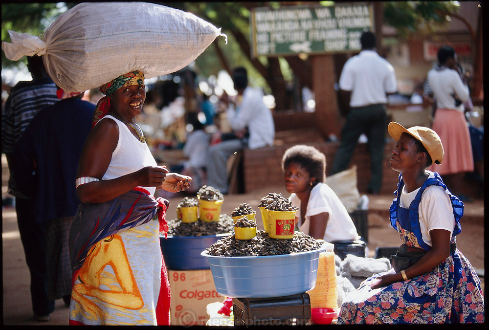 """Mopane worm merchants in the central market of Thohoyandou serve as the intermediaries between the worm wholesalers and individual customers. """"Mopane"""" refers to the mopane tree, which the caterpillar eats. Dried mopane worms have three times the protein content of beef and can be stored for many months. Eaten dry the worms are hard, crispy, and woody tasting. Thohoyandou, South Africa. (Page 132,133)"""