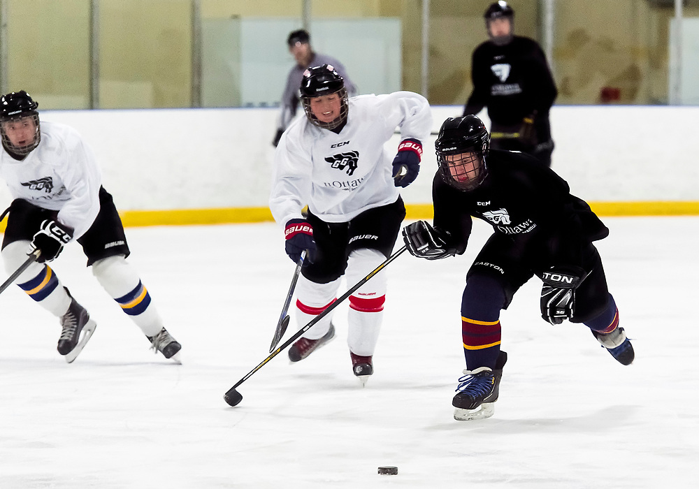 uOttawa Intramural's Ice Hockey<br /> <br /> March 17, 2018<br /> <br /> Photo: Steve Kingsman for uOttawa
