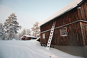 A snow covered wooden ladder leans against a cabin in the woods near Kirkeness, Finnmark region, northern Norway