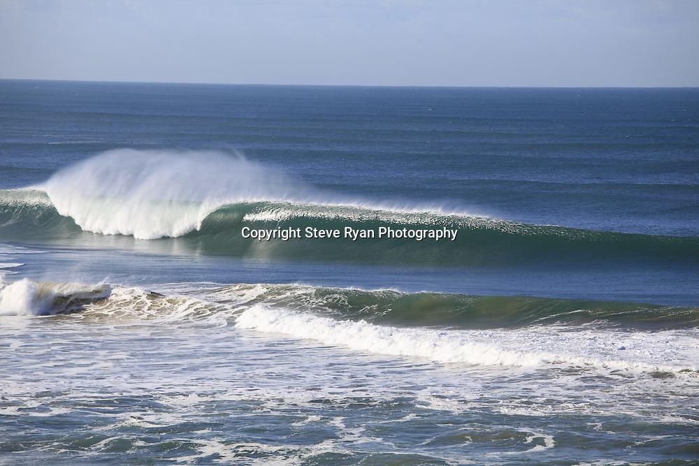 .pics  Steve Ryan.