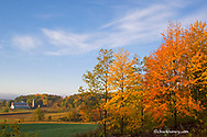 Autumn colors accent farm buildings near Chippewa Falls Wisconsin