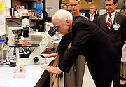 4/29/08- Tampa,FL.Republican presidential candidate John McCain looks under a microscope during a tour of Moffitt Cancer Center in Tampa,Fl Tuesday morning. ..  ( Scott Iskowitz/The Tampa Tribune)POOL PHOTO