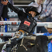 Window Rock native Cody James competes in the CBR Bullriding event Wednesday in Window Rock.