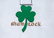 Green Shamrock sign symbol on wall of cafe bar, Ipswich, Suffolk, England, UK
