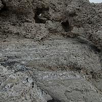 Calcium deposits line the shore of Lago Sarmiento in Torres del Paine National Park, Patagonia, Chile.