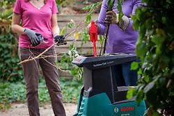 Alternative garden shredding options - Electric shredding machine versus or simple secateurs