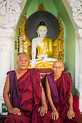 07 JUNE 2014 - YANGON, YANGON REGION, MYANMAR: Buddhist monks in front of a statue of the Buddha at Shwedagon Pagoda in Yangon. Shwedagon Pagoda is officially called Shwedagon Zedi Daw and is also known as the Great Dagon Pagoda and the Golden Pagoda. It's a 99 metres (325 ft) gilded pagoda and stupa located in Yangon. It is the most sacred Buddhist pagoda in Myanmar with relics of the past four Buddhas enshrined within: the staff of Kakusandha, the water filter of Koṇāgamana, a piece of the robe of Kassapa and eight strands of hair from Gautama, the historical Buddha.   PHOTO BY JACK KURTZ