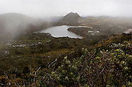 View of Pasochoa Wildlife Reserve in Ecuador.