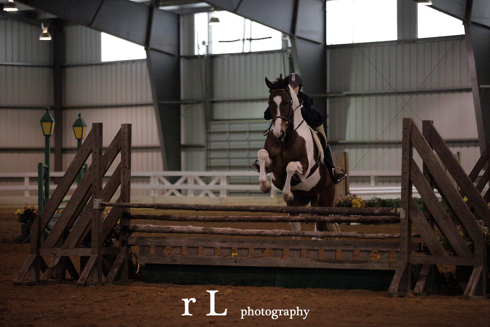 Top Sport Horse photography from Woodedge at NJ Horse Park