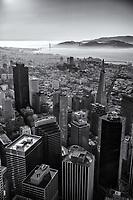 Financial District & Golden Gate Bridge (monochrome)