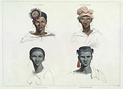Male and female Bushmen Portraits hand colored plate from the collection of  ' African scenery and animals ' by Daniell, Samuel, 1775-1811 and Daniell, William, 1769-1837 published 1804