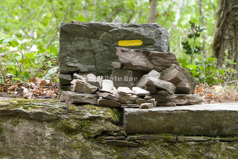 stone in a forest with paint marking of a hiking path