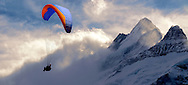 Paragliders in the Swiss Alps near the Schreckhorn  mountain above the Grindelwald valley - Swiss Alps - Switzerland .<br /> <br /> Visit our SWITZERLAND  & ALPS PHOTO COLLECTIONS for more  photos  to browse of  download or buy as prints https://funkystock.photoshelter.com/gallery-collection/Pictures-Images-of-Switzerland-Photos-of-Swiss-Alps-Landmark-Sites/C0000DPgRJMSrQ3U .<br /> <br /> Visit our SWITZERLAND  & ALPS PHOTO COLLECTIONS for more  photos  to browse of  download or buy as prints https://funkystock.photoshelter.com/gallery-collection/Pictures-Images-of-Switzerland-Photos-of-Swiss-Alps-Landmark-Sites/C0000DPgRJMSrQ3U