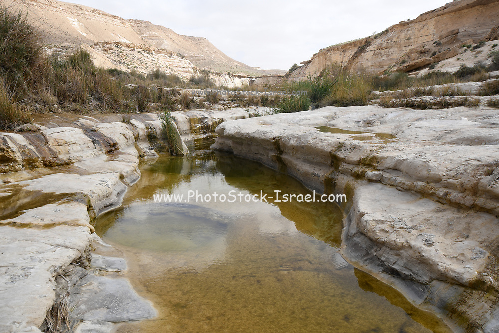 Wadi Hawarim, Negev Desert, Israel. Flood water collects in the stone pools