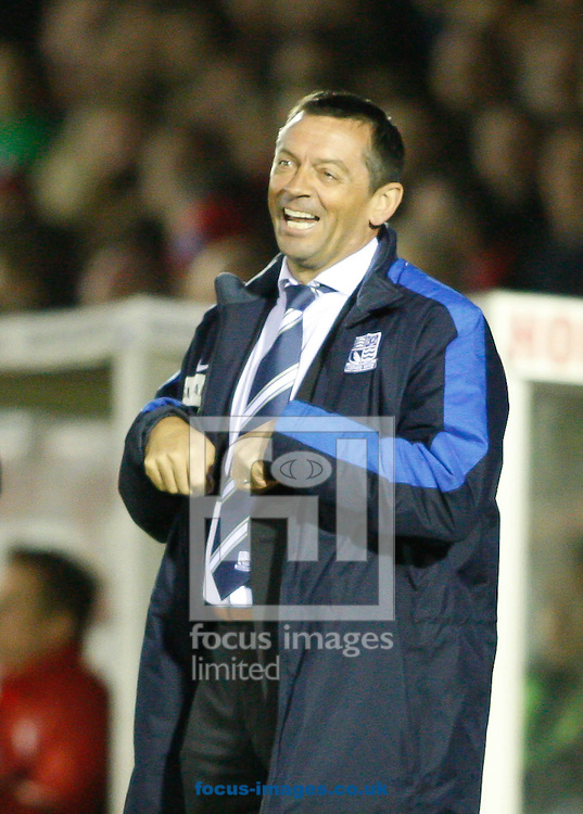 Picture by Andrew Tobin/Focus Images Ltd +44 7710 761829.16/04/2013. Southend United manager Phil Brown looks on during the npower League 2 match at the EBB Stadium, Aldershot.