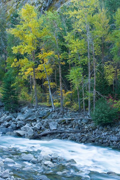 The Wenatchee River in fall Tumwater Canyon Cascades Range Washington USA&#xA;<br />