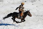 Kazakh eagle hunter with his golden eagle (Aquila chrysaetos) galloping on horseback through the snow , Altai Mountains, Bayan Ulgii, Mongolia