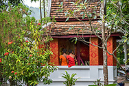 Young monks at a temple in Luang Prabang.