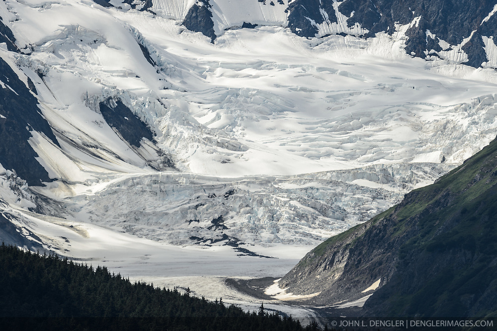 The Saksaia Glacier sits at the top of the Glacier Creek valley near the location of the potential mine site being explored by Constantine Metal Resources Ltd. of Vancouver, British Columbia along with investment partner Dowa Metals & Mining Co., Ltd. of Japan. The area of exploration, known as the Palmer Deposit is located near mile 40 of the Haines Highway and the Porcupine placer gold mining area near Haines, Alaska.<br /> <br /> The minerals that Constantine's drilling explorations have found are primarily copper and zinc, with significant amounts of gold and silver. Exploratory drilling to refine the location and mineral amounts are the current focus of the company.<br /> <br /> If approved and developed, the mine would be an underground mine. Besides the actual ore deposits, having the nearby highway access for transporting ore to the deepwater port at Haines is also attractive to Constantine.<br /> <br /> Support for a large scale mine such as the Constantine project is divided among residents of Haines, a small community in Southeast Alaska 75 miles northwest of Juneau. The community's needed economic boost from jobs, development and other mine support that a large-scale mine brings is tempting to some. To others, anything that might put the salmon spawning and rearing habitat and watershed resources at risk is simply unimaginable and unacceptable. Of particular concern is copper and other heavy metals in mine waste leaching into the Klehini and Chilkat River. Copper and heavy metals are toxic to salmon and bald eagles.<br /> <br /> The Chilkat River chum salmon are the primary food source for one of the largest gatherings of bald eagles in the world. Each fall, bald eagles congregate in the Alaska Chilkat Bald Eagle Preserve, located only three miles downriver from the area of current exploration. At times more than 3,000 eagles have been recorded at the primary gathering area for the fall chum salmon run.
