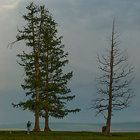 A photographer stands below larch trees beside Lake Hovsgol, in Lake Hovsgol National Park, Mongolia.