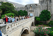Acute-angle view of Gothic-arched stone bridge and surrounding gardens, leading to Pile Gate and city walls, Dubrovnik old town, Croatia