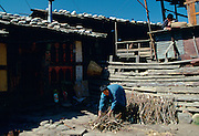 Stacking firewood at home, Paro, Bhutan