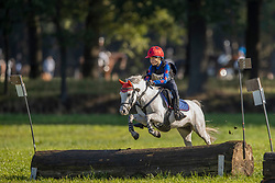 Sels Milan, BEL, Ronaldo Van De Nieuwe Heide<br /> LRV Eventing Merksplas 2020<br /> © Hippo Foto - Dirk Caremans<br /> 10/10/2020