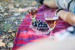 Wine and grapes on outdoor picnic blanket